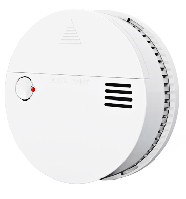 Smoke and Carbon Monoxide Detector Sound and Flash Alarm